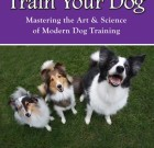 You Can Train Your Dog